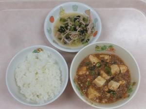 幼児食 ご飯 麻婆豆腐 ナムル