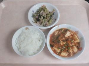 幼児食 ご飯 マーボー豆腐 ナムル